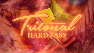 Tritonal-Hard-Pass-ft.-Ryann-Official-Lyric-Video